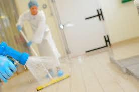 Serviço de desinfecção de ambientes