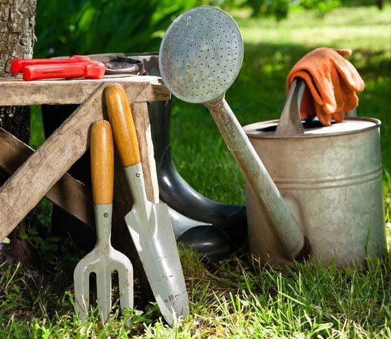 Serviços de jardinagem Osasco