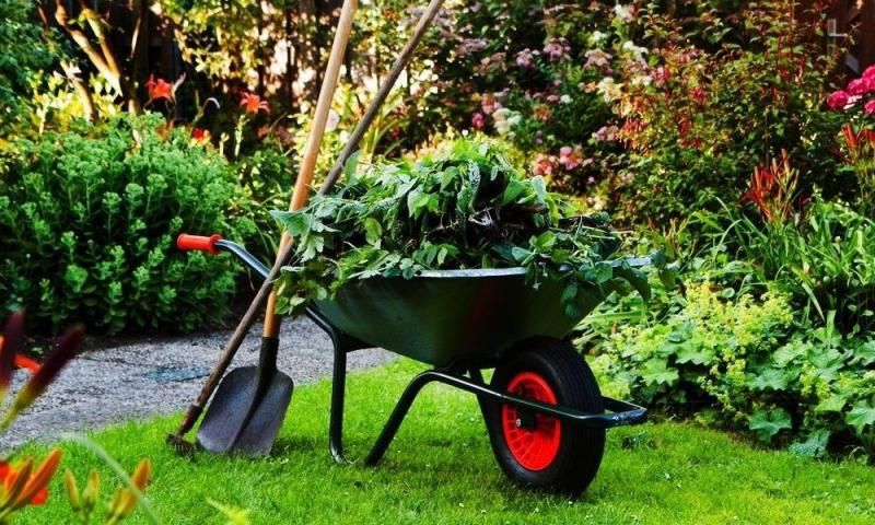 Terceirização de serviços jardinagem